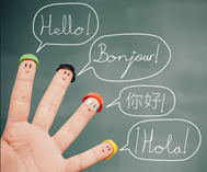 Why Should Your Child a Language?